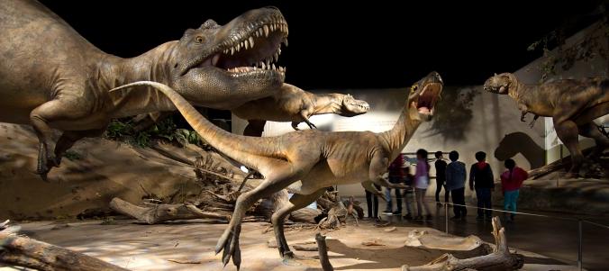 RTMP-CretaceousAlbertaGallery-kids