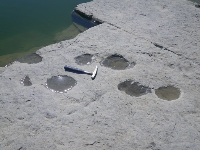 water in footprints