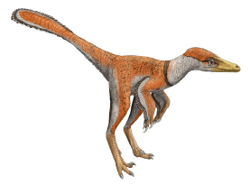 troodon-small