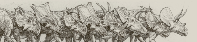 Some of the diversity of ceratopsid cranial display structures. Illustration by Julius Csotonyi.