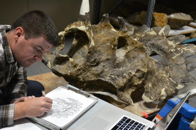 Dr. Caleb Brown creating a scientific illustration of Regaliceratops.