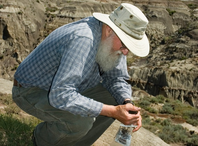 Dr. Dennis Braman collecting sediment samples at Dinosaur Provincial Park.