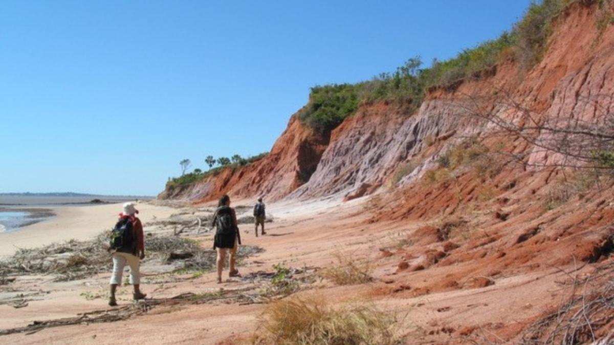 Speaker Series 2019: The Origins and Evolution of Madagascar's Modern Vertebrates